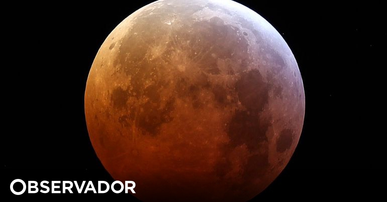 950e119c9 As cinco horas da Super Lua Vermelha em 5 pontos (e muitas imagens) para  quem esteve a dormir – Observador