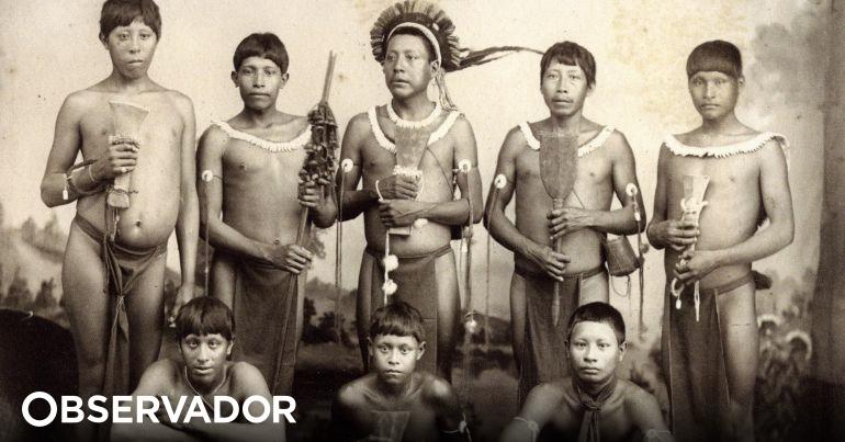 Júlio Siza: a surpresa tropical
